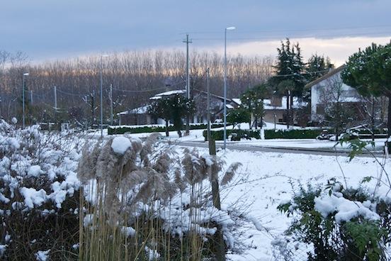 Chiasiellis sotto la neve